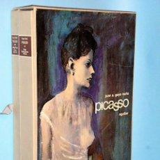 Libros de segunda mano: PICASSO . LIBROFILM (TEXTO+ DIAPOSITIVAS Y FICHAS TECNICAS ). Lote 86382452