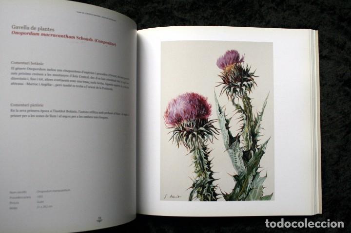 Libros de segunda mano: SUZANNE DAVIT - UNA IL.LUSTRADORA A L´INSTITUT BOTÀNIC Omnis Cellula,Insitut Botànic de Barcelona, - Foto 4 - 97712727