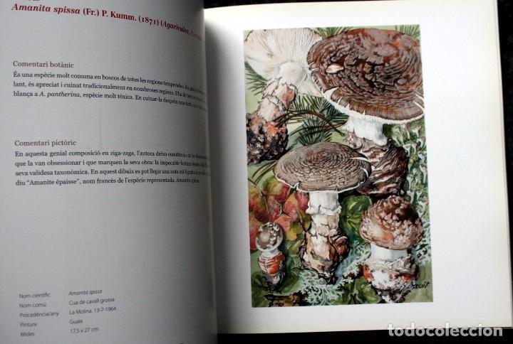 Libros de segunda mano: SUZANNE DAVIT - UNA IL.LUSTRADORA A L´INSTITUT BOTÀNIC Omnis Cellula,Insitut Botànic de Barcelona, - Foto 7 - 97712727