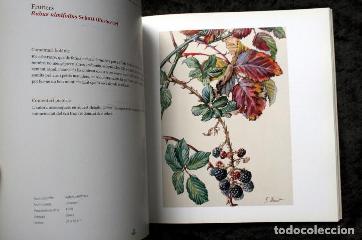 Libros de segunda mano: SUZANNE DAVIT - UNA IL.LUSTRADORA A L´INSTITUT BOTÀNIC Omnis Cellula,Insitut Botànic de Barcelona, - Foto 8 - 97712727