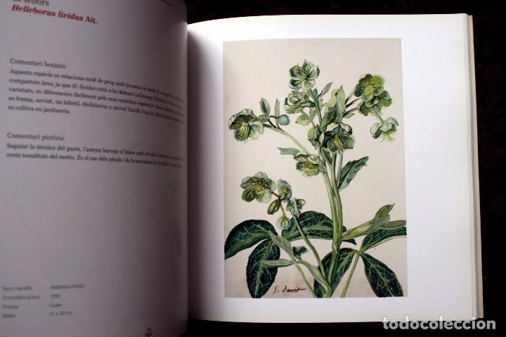 Libros de segunda mano: SUZANNE DAVIT - UNA IL.LUSTRADORA A L´INSTITUT BOTÀNIC Omnis Cellula,Insitut Botànic de Barcelona, - Foto 9 - 97712727
