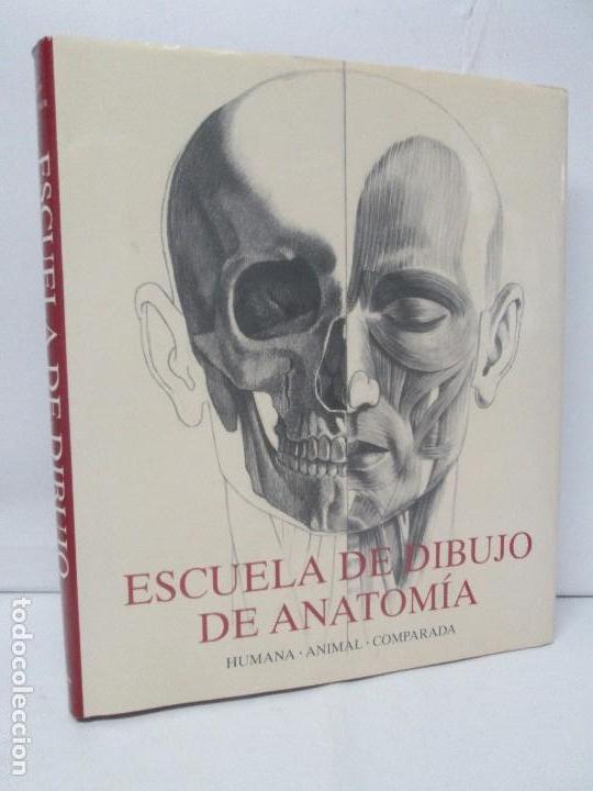 escuela de dibujo de anatomia humana animal com - Comprar Libros de ...