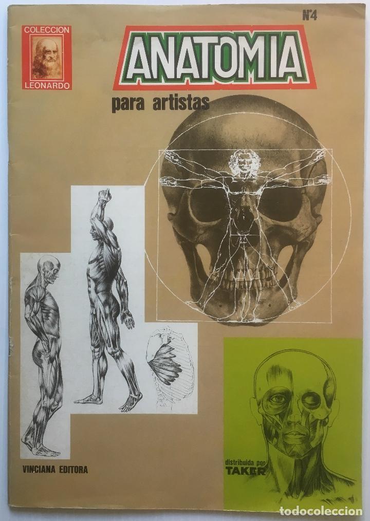 anatomia para artistas. nº 4. colección leonard - Comprar Libros de ...