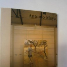 Libros de segunda mano: LIBROS ARTE PINTURA - ANTONIO MAYA CONDE DUQUE 2002 CATALOGO EXPOSICION . Lote 100945851