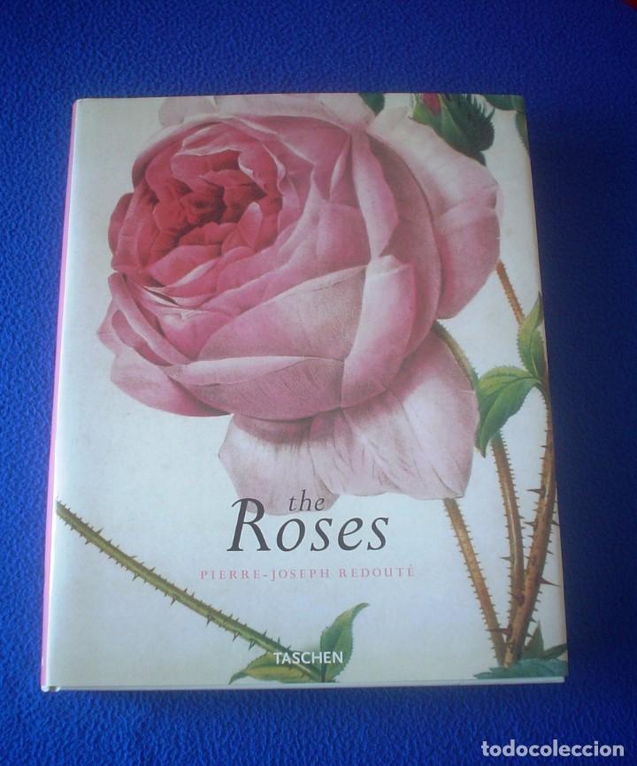 PIERRE-JOSEPH REDOUTÉ: THE ROSES (Libros de Segunda Mano - Bellas artes, ocio y coleccionismo - Pintura)