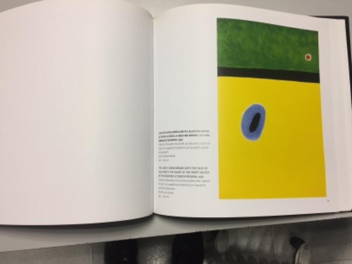 Libros de segunda mano: Joan Miró, apuntes de una colección. Colección Katsuta. Autora Rosa Maria Malet. NUEVO! - Foto 8 - 104803927
