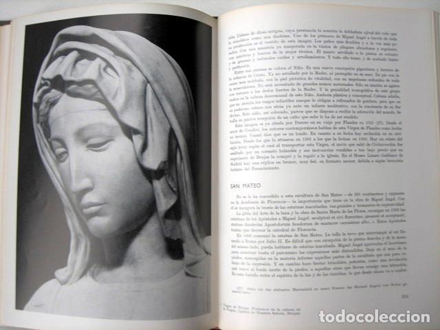 Libros de segunda mano: Miguel Angel, de José Camón Aznar - Foto 4 - 108839151
