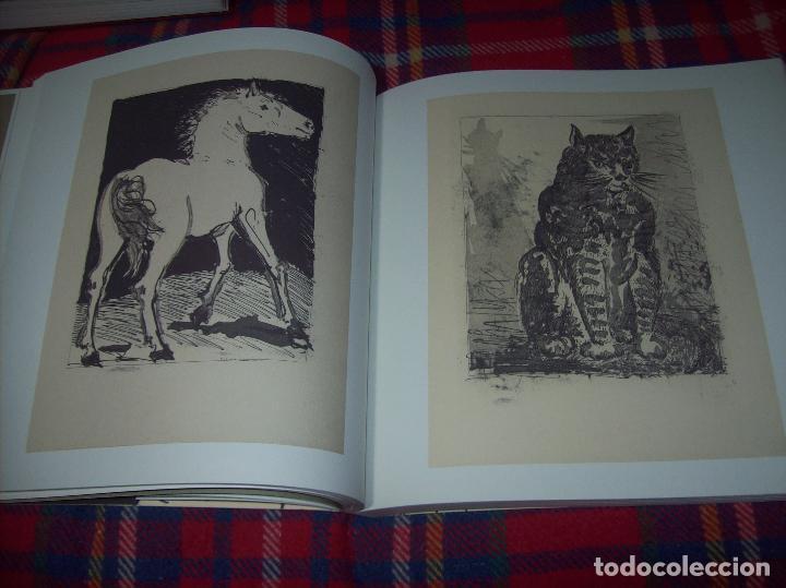 Libros de segunda mano: PICASSO Y LOS LIBROS. FUNDACIÓN BANCAJA. FOTOGRAFÍAS : JUAN GARCÍA ROSELL. 2005. VER FOTOS. - Foto 16 - 111742759