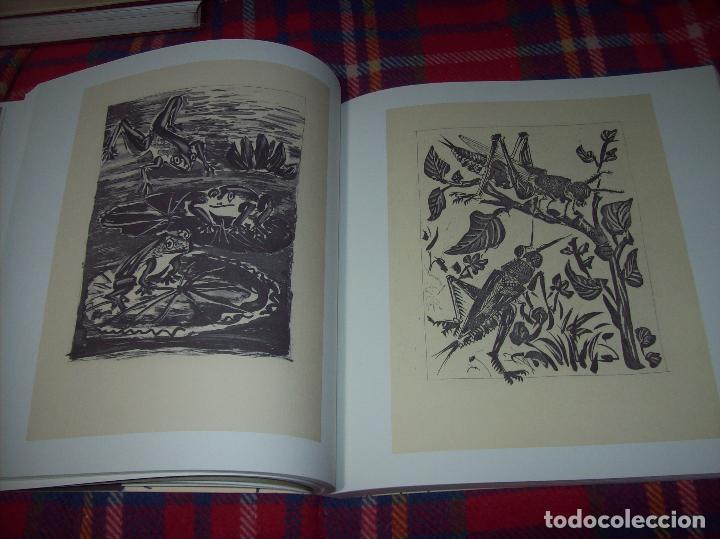 Libros de segunda mano: PICASSO Y LOS LIBROS. FUNDACIÓN BANCAJA. FOTOGRAFÍAS : JUAN GARCÍA ROSELL. 2005. VER FOTOS. - Foto 17 - 111742759