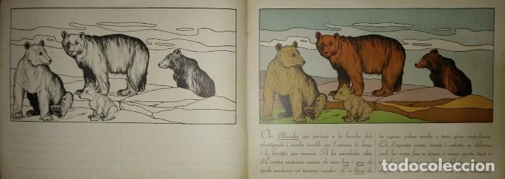 Libros de segunda mano: La zoología en lescola 2 amb dibuixos de Fernández Collado Excelent estado sense utilitzar DIBUIX - Foto 3 - 117329699