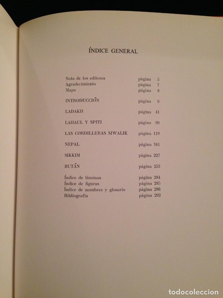 Libros de segunda mano: LOS TESOROS DEL HIMALAYA - LIBRO DE MADANJEET SINGHI - DESTINO 1968 (PINTURA MURAL Y ESCULTURA) - Foto 5 - 172108289