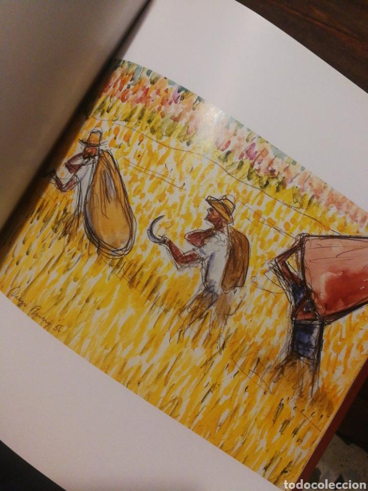 Libros de segunda mano: DIEGO RIVERA- COLECCIÓN IVEC, CADIZ 2004. - Foto 3 - 122625648