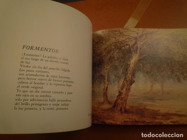 Libros de segunda mano: ESTRADA VILARRASSA. MALLORCA. EDITORIASL AUSA. 1983 - Foto 9 - 123102663