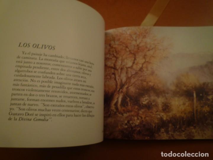 Libros de segunda mano: ESTRADA VILARRASSA. MALLORCA. EDITORIASL AUSA. 1983 - Foto 11 - 123102663