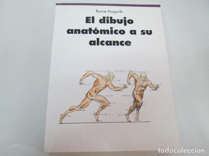 Libros de segunda mano: BURNE HOGARTH. EL DIBUJO DE LUCES Y SOMBRAS A SU ALCANCE. CABEZA HUMANA. ANATOMICO. 3 LIBROS - Foto 6 - 124191527
