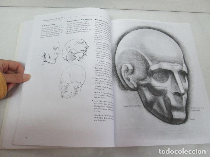 Libros de segunda mano: BURNE HOGARTH. EL DIBUJO DE LUCES Y SOMBRAS A SU ALCANCE. CABEZA HUMANA. ANATOMICO. 3 LIBROS - Foto 34 - 124191527