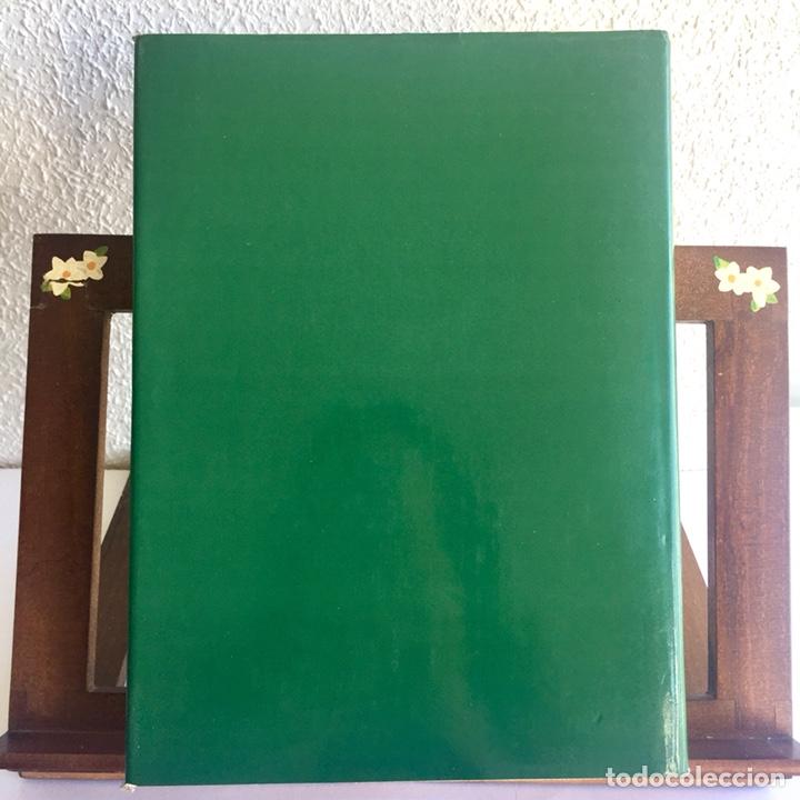 Libros de segunda mano: Dibujos De Goya: Los Álbumes. Pierre Gassier 1973 - Foto 11 - 125129847