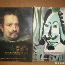Libros de segunda mano: DOS TOMOS COLECCIÓN DE ARTE CENTRAL-HISPANO. Lote 125259631