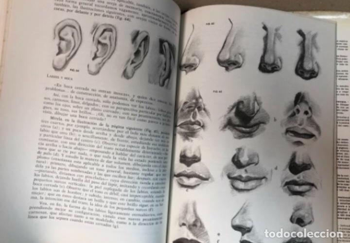 Libros de segunda mano: COMO DIBUJAR LA CABEZA HUMANA Y EL RETRATO - JOSÉ M° PARRAMÓN - 88 PÁGINAS (1965) - Foto 5 - 196090495