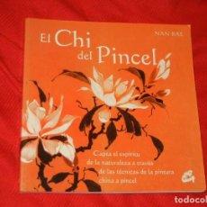 Libros de segunda mano: EL CHI DEL PINCEL, DE NAN RAE - 2005. Lote 126710727