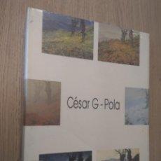Libros de segunda mano: CESAR G. POLA. CAJA DE AHORROS DE ASTURIAS. AYUNTAMIENTO DE OVIEDO . Lote 136022338