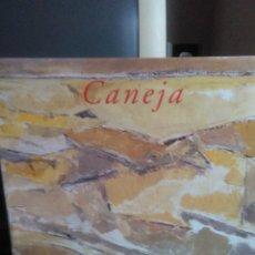 Libros de segunda mano: FRANCISCO CALVO SERRALLER, CANEJA. Lote 143752554