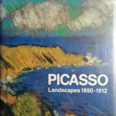 Libros de segunda mano: PICASSO : LANDSCAPES, 1890-1912 : FROM THE ACADEMY TO THE AVANT-GARDE / MARÍA TERESA OCAÑA. 1994. . Lote 143973042