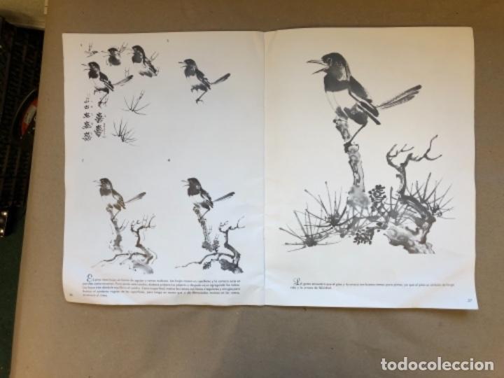 Libros de segunda mano: MÉTODOS SIMOLES PARA PINTAR CUADROS CHINOS. CHOW CHIAN CHIU Y CHOW LEUNG CHEN-YING. WALTER T. FOSTER - Foto 7 - 147457798