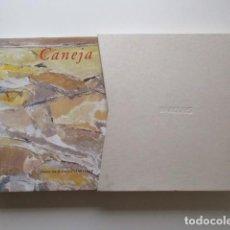 Libros de segunda mano: CANEJA, FRANCISCO CALVO SERRALLER, IMPRESIONANTE VOLUMEN, EN ESTUCHE ENTELADO, VER FOTOS. Lote 147766306