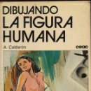 Libros de segunda mano: DIBUJANDO LA FIGURA HUMANA. Lote 149843422