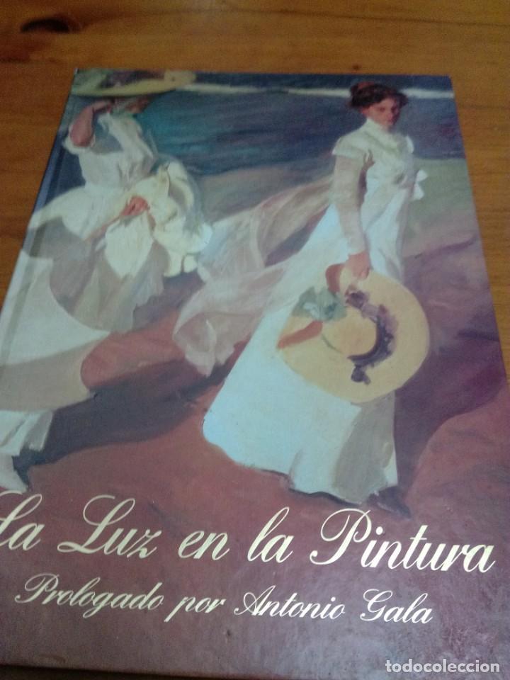 LA LUZ EN LA PINTURA. PROLOGADO POR ANTONIO GALA. EST16B3 (Libros de Segunda Mano - Bellas artes, ocio y coleccionismo - Pintura)