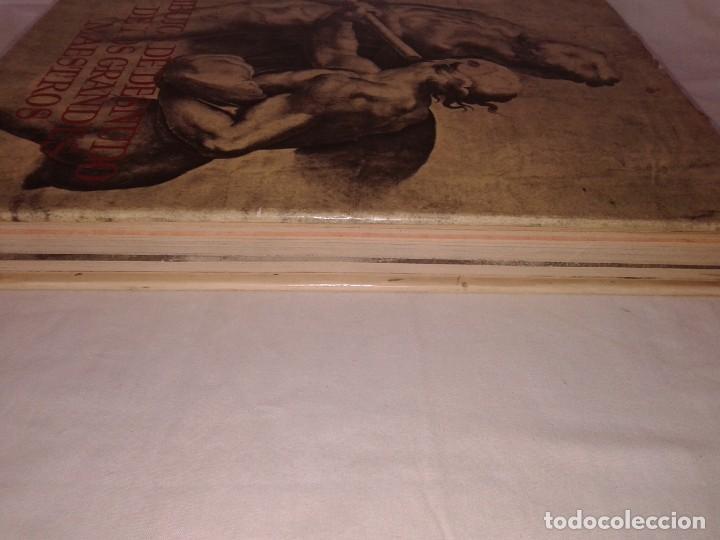 Libros de segunda mano: DIBUJOS DE DESNUDO DE LOS GRANDES MAESTROS, 120 LÁMINAS - Foto 9 - 153584018