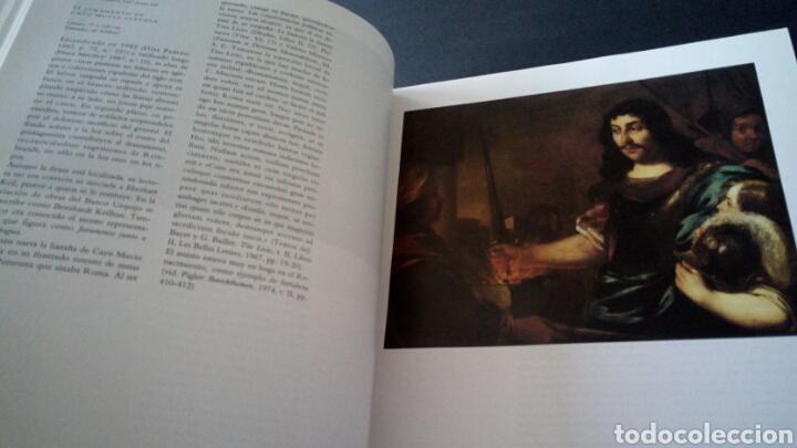 Libros de segunda mano: CTC - AÑO 1991 - CATÁLOGO DE PINTURA BUEN ESTADO COLECCION FUNDACIÓN BANCO HISPANOAMERICANO - Foto 8 - 153601058