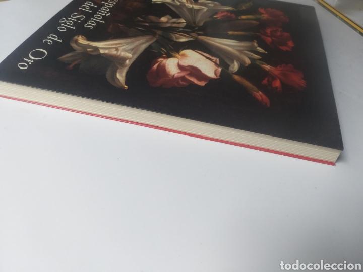 Libros de segunda mano: Pintura antigua . Flores españolas del siglo de oro Francisco Calvo Serraller 2003 Museo del Prado - Foto 4 - 154162710