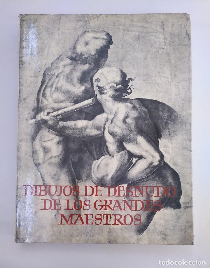 DIBUJOS DE DESNUDO DE LOS GRANDES MAESTROS. ARM19 (Libros de Segunda Mano - Bellas artes, ocio y coleccionismo - Pintura)