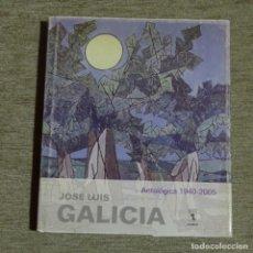 Libros de segunda mano: LIBRO JOSÉ LUIS GALICIA.ANTOLOGICA 1940-2005.324 PÁGINAS.. Lote 155700874