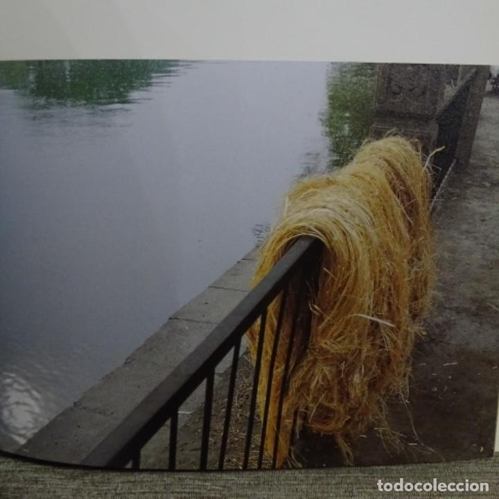 Libros de segunda mano: Libro zhu jinshi.power and jiangshan.arario gallery.catalogo del pintor. - Foto 8 - 156375858