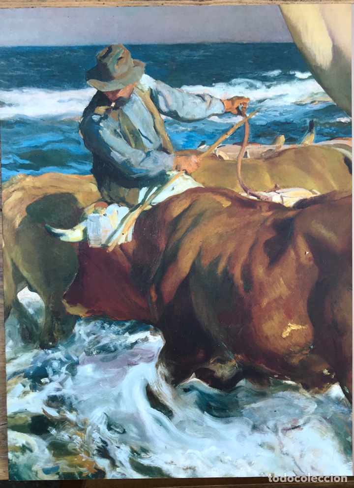 Libros de segunda mano: Pintor Joaquin Sorolla. Visión de España. Hispanic Society of America y Bancaja - Foto 3 - 212542623