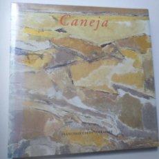 Libros de segunda mano: PINTURA SIGLO XX . JUAN MANUEL CANEJA . FRANCISCO CALVO SERRALLER BARCLAYS. Lote 158576730