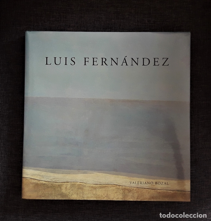 LUIS FERNANDEZ- VALERIANO BOZAL - MUSEO DE ARTE CONTEMPORANEO ESTEBAN VICENTE (Libros de Segunda Mano - Bellas artes, ocio y coleccionismo - Pintura)