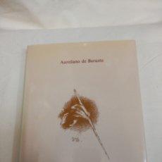 Libros de segunda mano: VELÁZQUEZ DE AURELIANO DE BERUTE. Lote 165604642