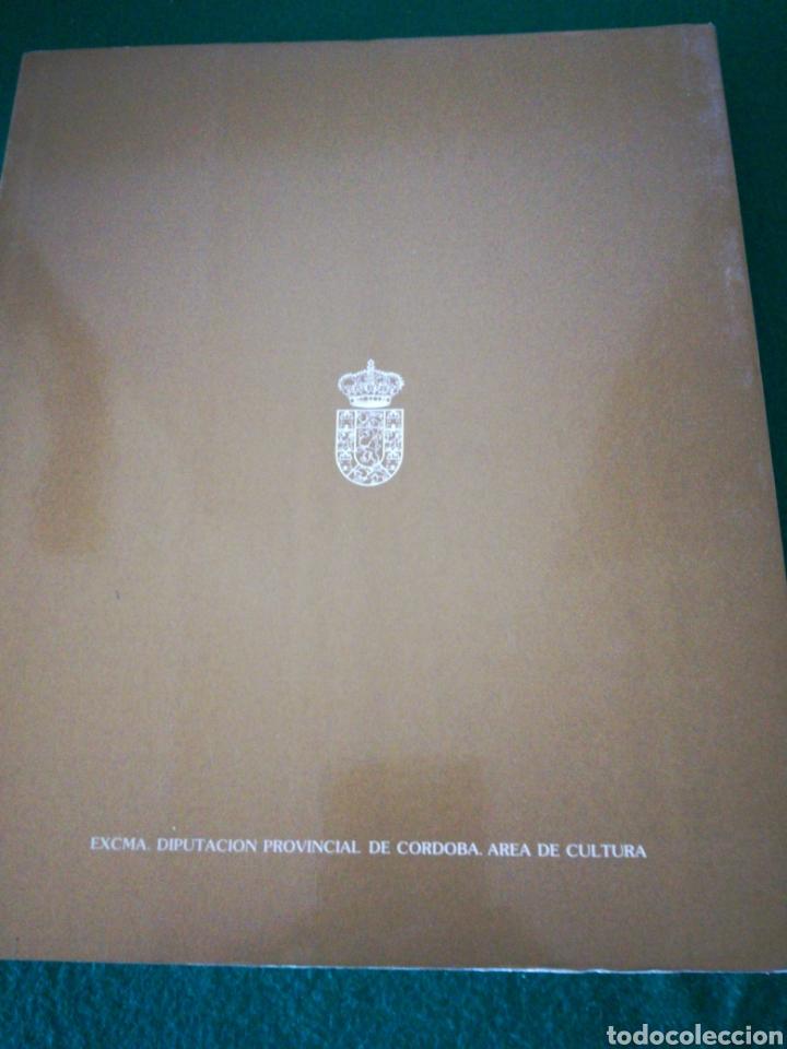 Libros de segunda mano: ANTONIO DEL CASTILLO Y SU EPOCA ...CATALOGO EXPOSICION - Foto 6 - 166752245