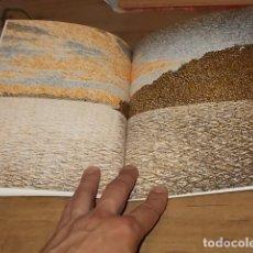 Libros de segunda mano: VICENTE PASCUAL. TERRA INCOGNITA. PALMA DE MALLORCA . CASAL BALAGUER. 1ª EDICIÓN 1991. . Lote 168976548