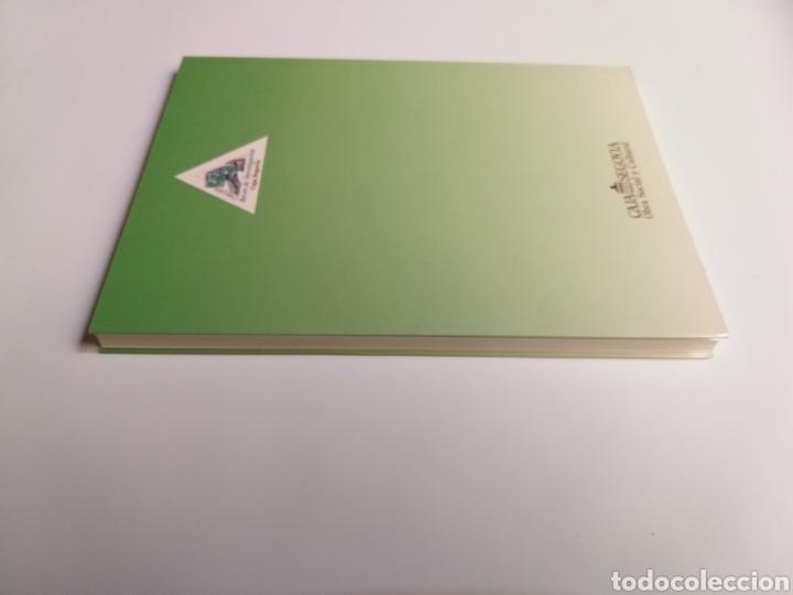 Libros de segunda mano: Segovia pintura antigua . Pinturas de Segovia en el Museo del Prado estudio de las pinturas de las i - Foto 5 - 175220033