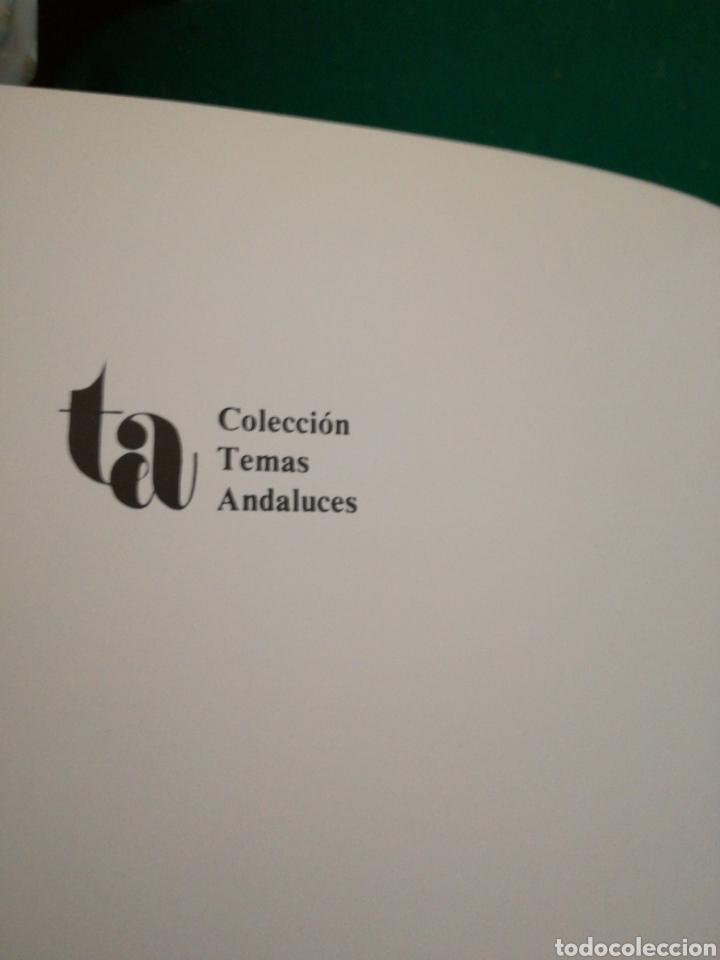 Libros de segunda mano: CORDOBA Y SU PINTURA RELIGIOSA CATALOGO - Foto 4 - 175406500