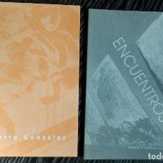 Libros de segunda mano: LOTE 2 LIBROS -CATALOGO ROBERTO GONZALEZ FERNANDEZ -ENCUENTROS Y LA CAIDA DEL IMPERIO ROMANO. Lote 177270428