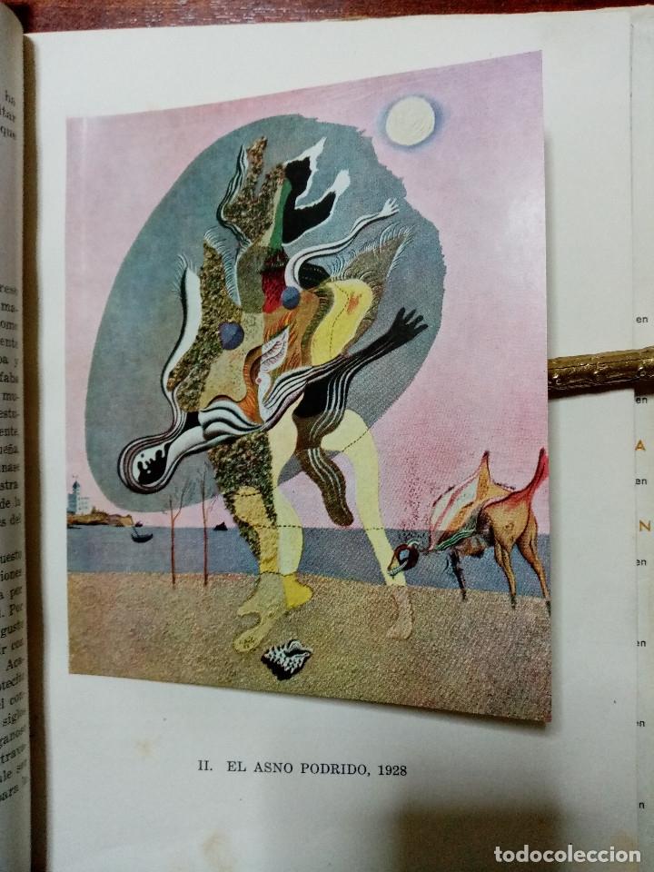 Libros de segunda mano: DALI - JUAN ANTONIO GAYA NUÑO - Foto 19 - 78415729