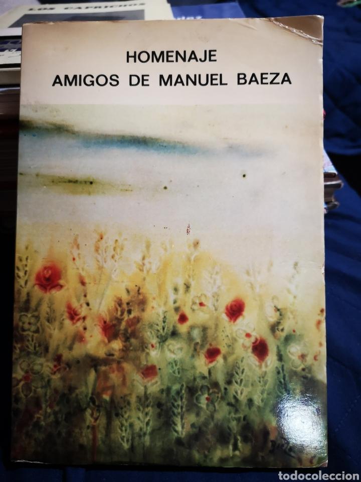 HOMENAJE - AMIGOS DE MANUEL BAEZA - ALICANTE 1981 (Libros de Segunda Mano - Bellas artes, ocio y coleccionismo - Pintura)
