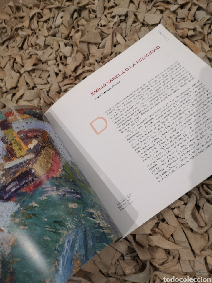 Libros de segunda mano: Miradas sobre Emilio VARELA, 2005 - Foto 3 - 183597907