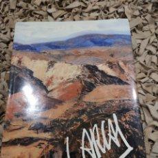 Libros de segunda mano: LUIS ARCAS POR CARLOS AREAN, GRAN FORMATO. Lote 183598365